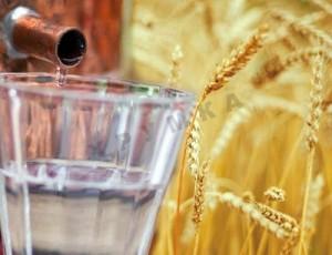 Самогон и пшеница