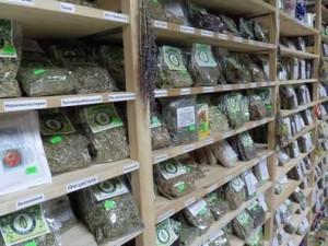 Травы в аптеке