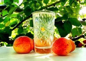 Самогон из персиков